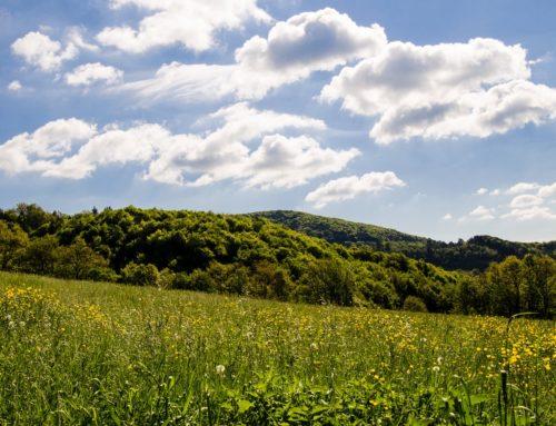 Landleben: Geschichten aus Müsen im Siegerland